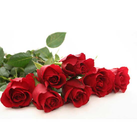 خريدآنلاين گل رز به تعداد سال تولد همین امروز تهران