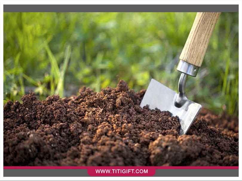 چگونه خاک مناسب برای گیاهان خود انتخاب کنیم؟